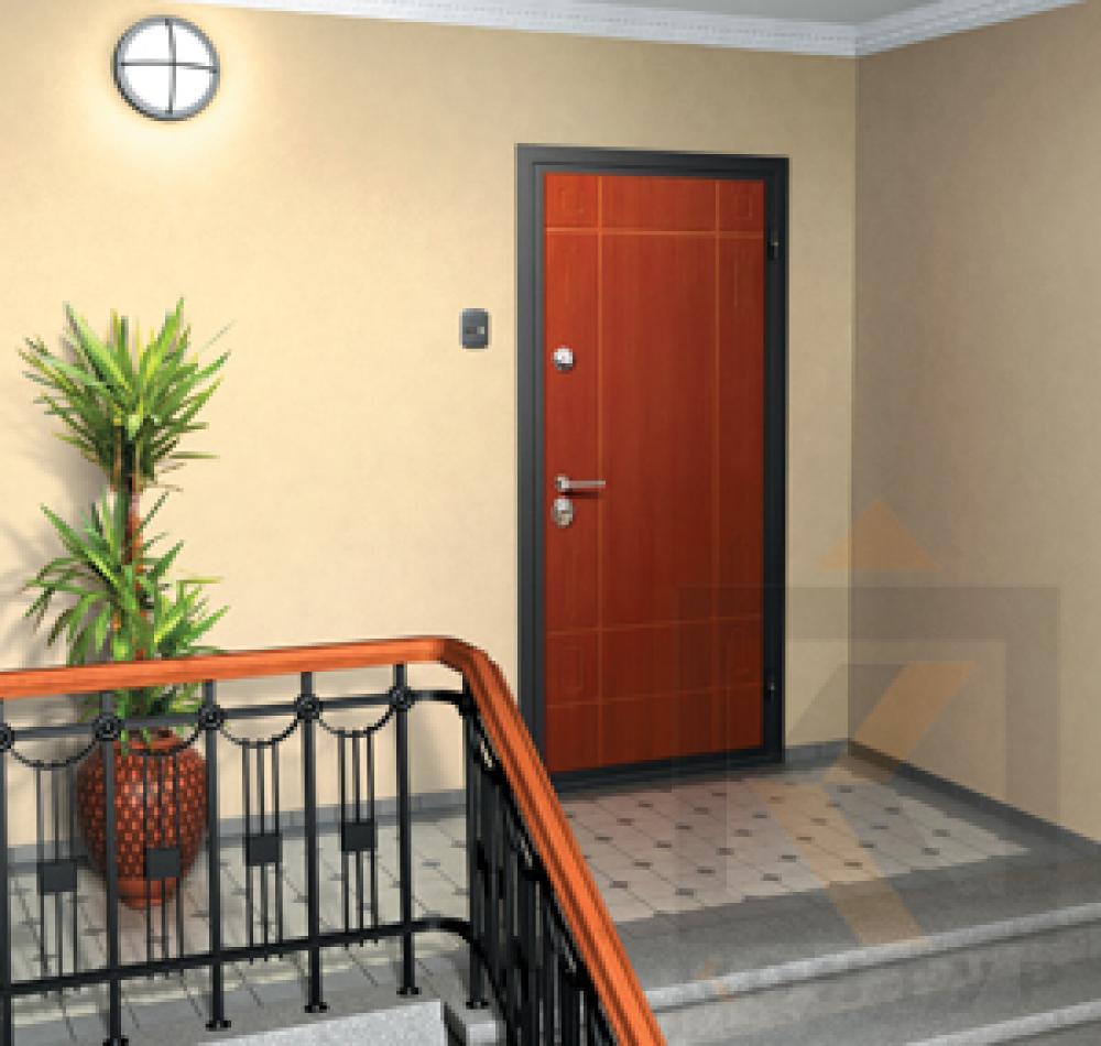 железные двери квартиры