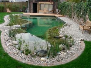 Искусственные водоемы в ландшафте сада