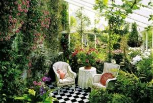 Подбор растений для интерьера