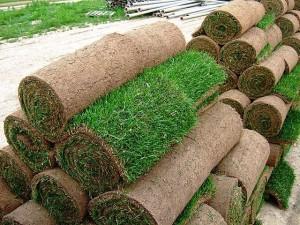 Быстрый и удобный рулонный газон
