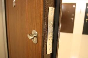 Металлические двери с установкой