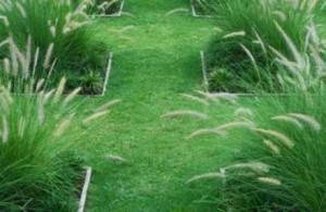 Травяные дорожки в саду