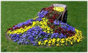 Оформление цветника на дачном участке