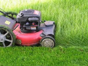 Недорогие газонокосилки