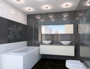 Сантехническая эволюция в туалетной комнате