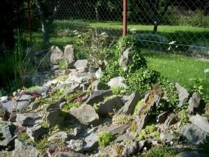 Чешская скалка в садовом ландшафте