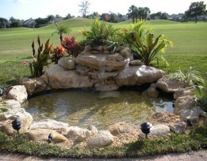Особенности оснащения декоративных водоемов