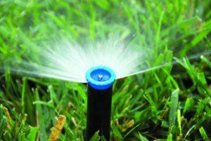 Как выбрать разбрызгиватели для полива огорода
